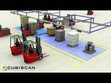 CubiScan Big Bear System Solution